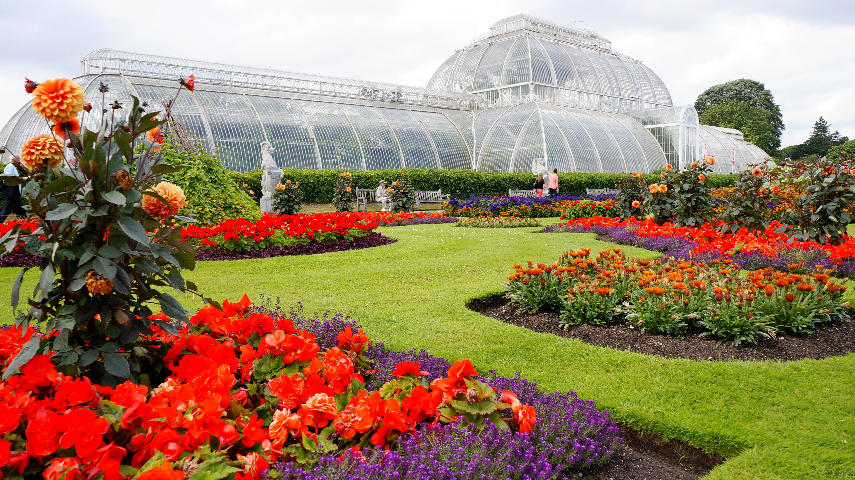 Kew Garden, o Jardim Botânico Real ⋆ Viajario